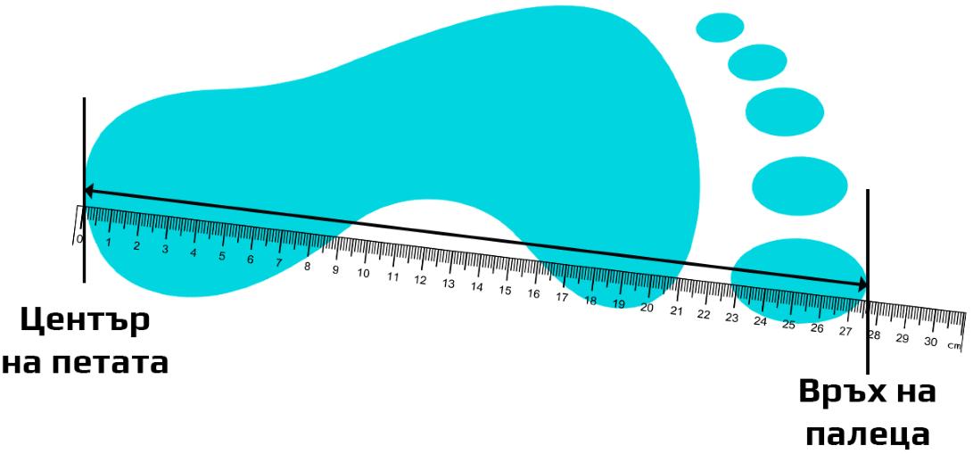 Размер обувки - Мъже